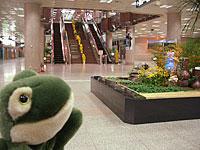 早朝の光州空港